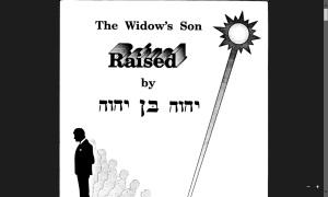 The Widow's Son Raised
