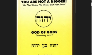 You Are Not a Nigger - Our True History, The World's Best Kept Secret